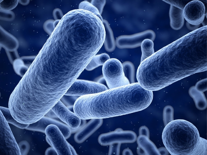Targeting Chronic Infections and Deadly Bacteria