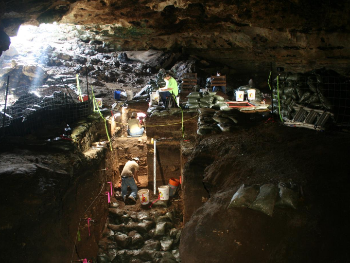Researchers working in Hall's Cave