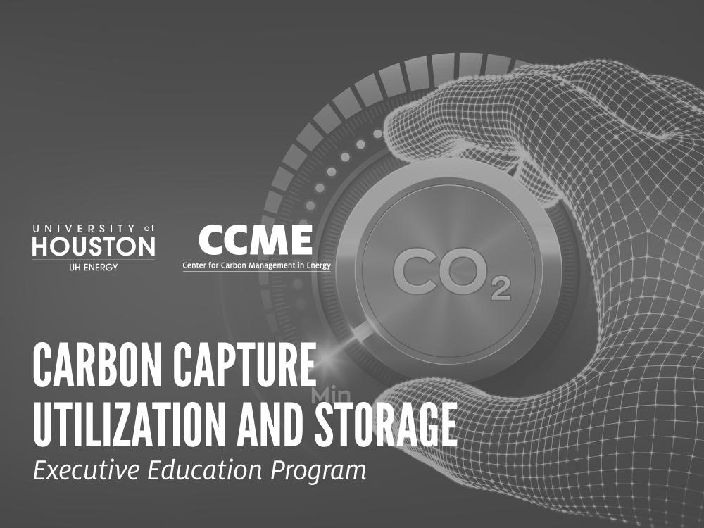 CCUS Executive Education Program Image