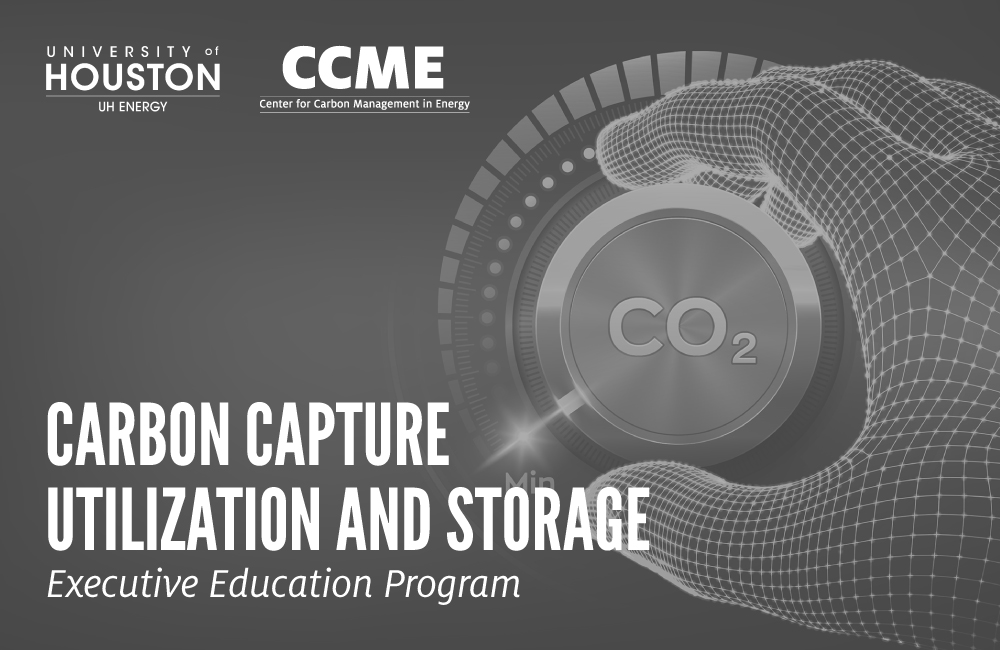 CCUS Executive Education Program Image - click here to find out more