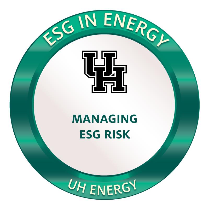 ESG Badge 3 Image