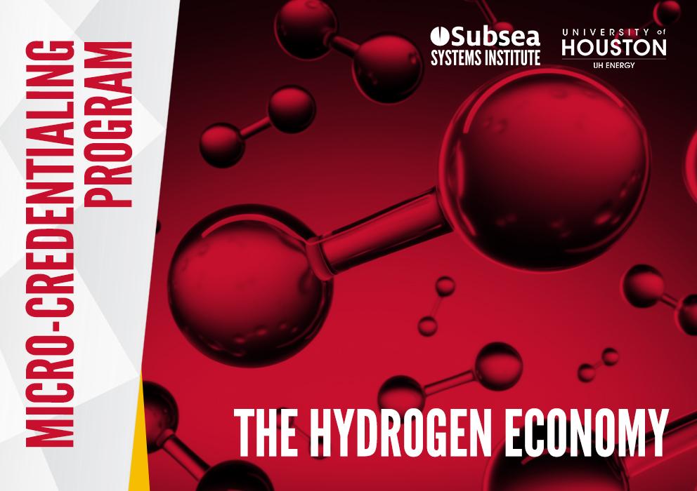 The Hydrogen Economy Program banner image