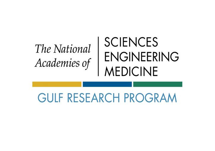NASEM Logo Image