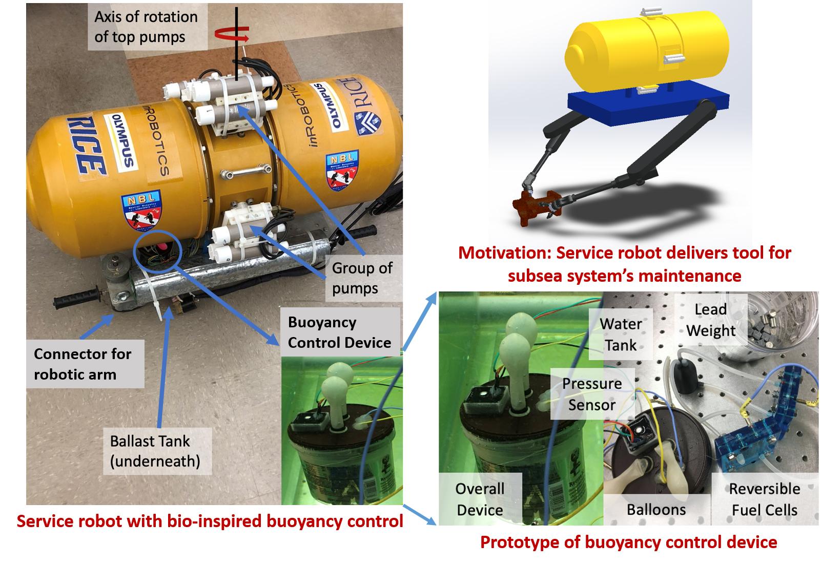 Bio-Inspired Buoyancy Control Image