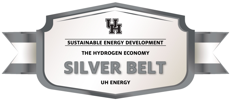 The Hydrogen Economy Silver Belt Image