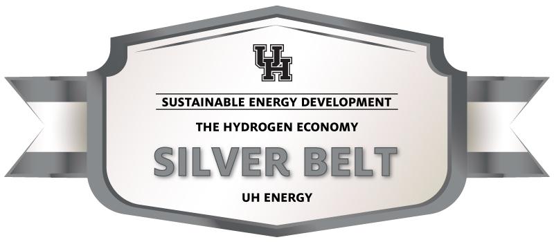 The Hydrogen Economy Silver Belt Image
