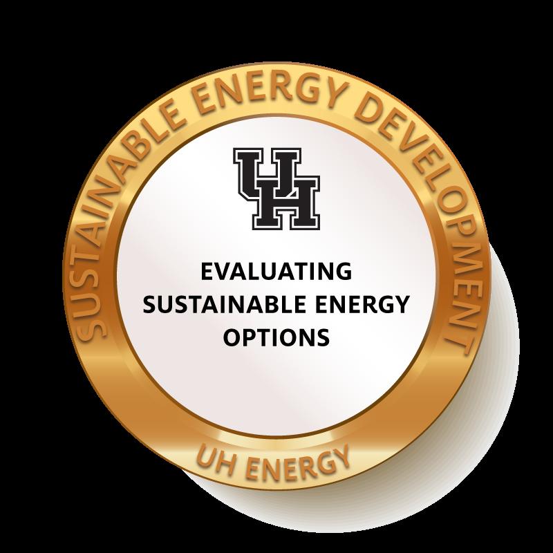 Evaluating Sustainable Energy Options Badge Image