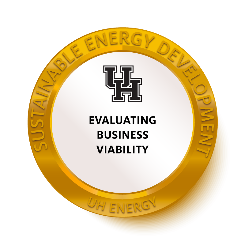 Evaluating Business Viability Badge Image