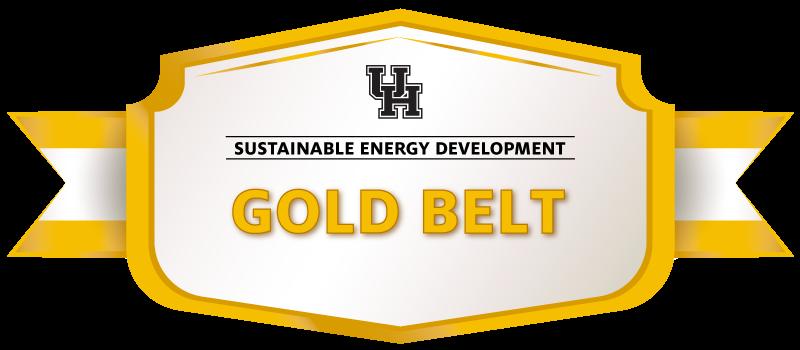 Gold Belt Image