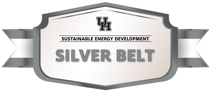 Silver Belt Image